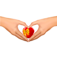 woman hands in the form of heart vector image vector image