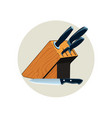 a set kitchen knives kitchen knife icon vector image