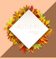 autumn diamond-shaped frame for text decorated vector image