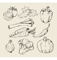 black vegetables vector image vector image