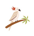 cockatoo bird sitting on palm tree trunk tropical vector image