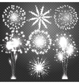 Firework bursting in various shapes sparkling vector image