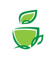 herbal green tea cup symbol icon on white vector image
