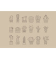 cactus and succulents in pots outline icons vector image