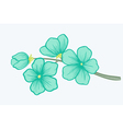 beautiful blooming branch a symbol spring vector image