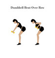 dumbbell bent over row exercise vector image vector image