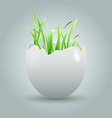 eggshell with growing grass vector image vector image