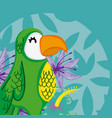 exotic birds cartoon vector image