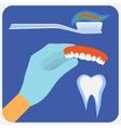 Flat dental instruments set vector image