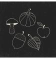 Hand Drawn Doodle Autumn Symbols vector image vector image