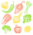 set hand drawn elements sketch style vegetables vector image vector image