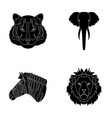 tiger lion elephant zebra realistic animals vector image