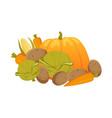 heap pile group of autumn vegetables vector image