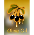 Olive branch and golden oil vector image vector image