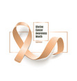 peach ribbon for uterine cancer awareness month 3d vector image vector image