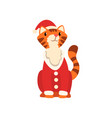 tiger symbol of new year cute animal of chinese vector image