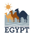 travel to egypt traveling destinations to old vector image