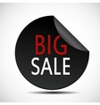Circle Big Sale Label vector image