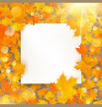 autumn maple leaves template with white paper card vector image
