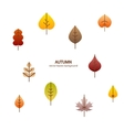 fall leaves tree background vector image vector image