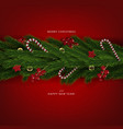 luxury decor christmas tree branches holiday back vector image vector image