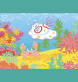 sea monster mollusc and crab on a reef vector image vector image