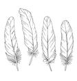 Hand drawn feathers set on white background vector image