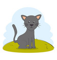 cute cat pet on grass vector image vector image
