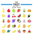 fruit flat icon set food symbols collection vector image vector image