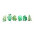 set watercolor tropical plants leaves vector image vector image