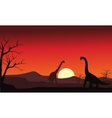 Silhouette of two brachiosaurus at sunset vector image vector image