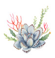 watercolor bouquet cacti and succulent vector image vector image