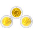 Metal coins euro vector image