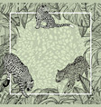 big wild cats banner background with tropical vector image