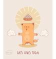 Cat Loves Yoga Red -bodhisattva vector image vector image