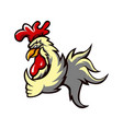 chicken rooster athletic club logo concept vector image