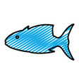 doodle tropical tuna fish nature animal vector image vector image