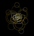 gold rose and circles on black background vector image