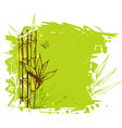 Green background with bamboo vector image vector image
