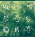 harvest line icons vector image vector image