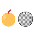 orange icon set citrus fruit vector image vector image