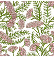 milfoil pattern vector image vector image