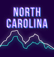 north carolina vintage 3d lettering retro bold vector image