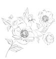 Red Poppy Flower vector image vector image