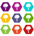 tree icon set color hexahedron vector image vector image