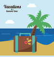 vacations in paradise suitcase palm beach vector image vector image