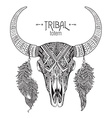 hand drawn bull skull with feathers vector image