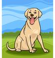 labrador retriever dog cartoon vector image vector image