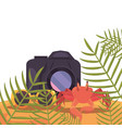 photography camera crab and sunglasses exotic vector image vector image