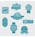Set of sale labels and badges vector image